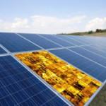 Neue Methode zur Überprüfung von Schäden an Photovoltaikanlagen entwickelt